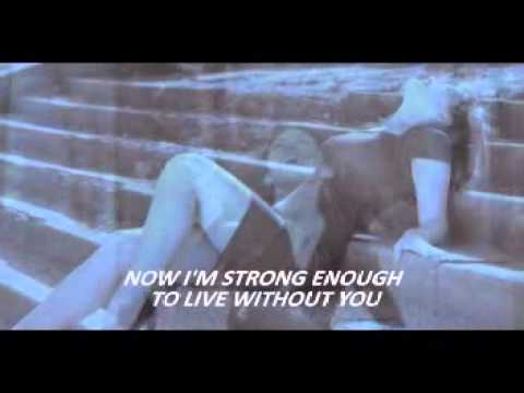 Cher - Strong enough (with lyrics)