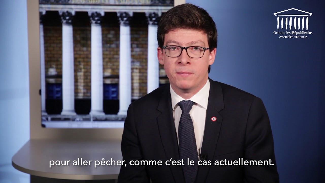 Paroles de Députés LR - Pierre-Henri Dumont - BREXIT - YouTube 28252960a805