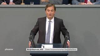 Bundestagsdebatte zum  Asylrecht, Rede von Bernd Baumann
