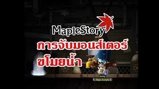 MapleStory เควส : การจับมอนส์เตอร์ขโมยน้ำ (Surl) thumbnail