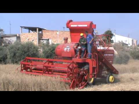 combine harvester mf 400 aradippou cyprus 6