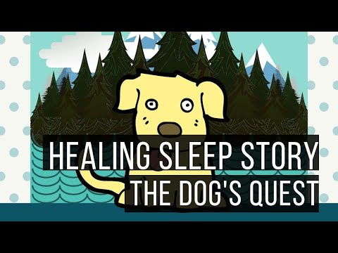 The Dogs Quest (Sleep Story for Grown Ups)