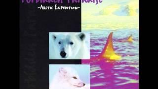 Forbidden Paradise 5 - Arctic Expedition (Classic DJ Tiësto mix)