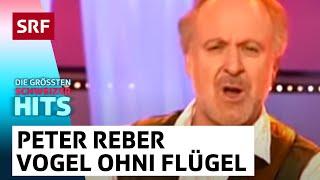 Die grössten Schweizer Hits - Peter Reber: «E Vogel ohni Flügel»