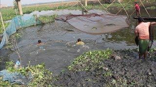 cast net fish catching ||  কীভাবে টানা জাল দিয়ে মাছ শীকার করে || fish catching in alaskha