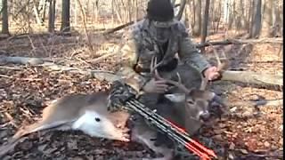 Подборка видео о охоте с луком и арбалетом.