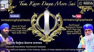 Rajan Ke Raja - Bhai Sahib Bhai Nirmal Singh Khalsa Pipli Wale