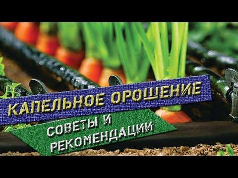 Капельное орошение | Принцип работы капельного полива