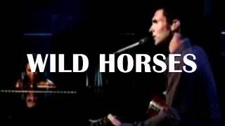 Wild Horses (Alicia Keys ft Adam Levine) COVER