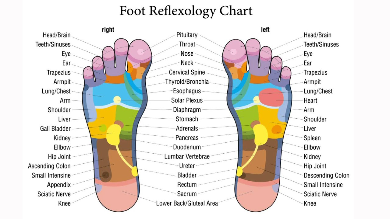 Exceptionnel Foot reflexology - Massage - Acupressure - Map of trigger zones  EJ09