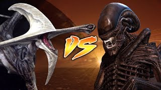 Xenomorph VS Bioraptor [Who Would Win?]