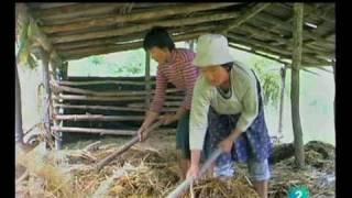 Bhutan, progreso y felicidad