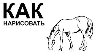 Картинки лошадей. КАК карандашом НАРИСОВАТЬ ЛОШАДЬ(Как нарисовать лошадь поэтапно карандашом для начинающих за короткий промежуток времени. http://youtu.be/57d_jZ74iXQ..., 2015-06-22T08:41:21.000Z)