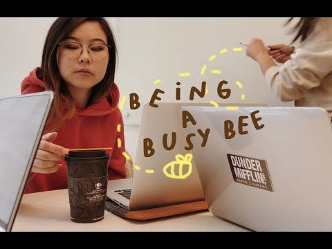 🐝being a busy bee!🐝(a uni vlog)