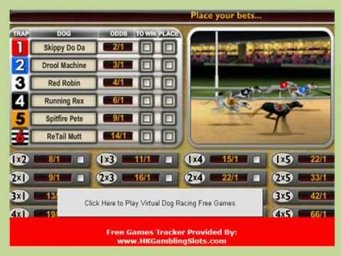 Greyhound racing betting games