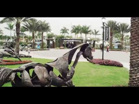 Winter Equestrian Festival Overview