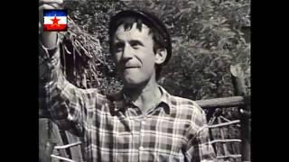 Boro Stjepanović - KAD SU SREMCI KRENULI / Partizanska pesma