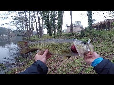 Atlanta Georgia SPILLWAY Topwater Fishing