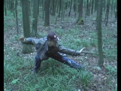 Forest Kung Fu: Seven steps of Shaolin