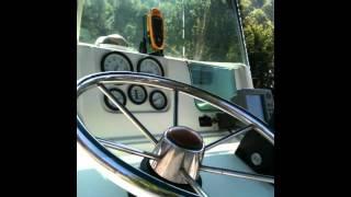 bateau a moteur johnson 115cv