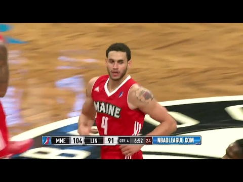Abdel Nader NBA D-League Highlights: January 2017