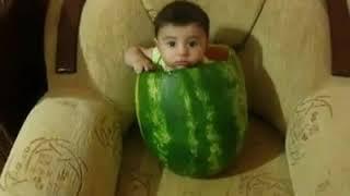 Naughty baby inside watermelon