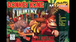 Donkey Kong Country Theme 2019 Remix