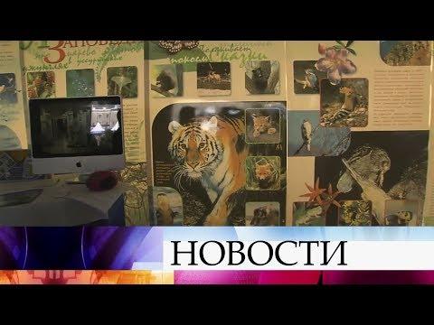 Во Владивостоке прошли большие торжества в честь дня рождения Приморского края.