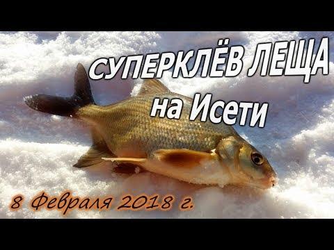 видео: СУПЕРКЛЁВ ЛЕЩА на Исети 08/02/2018 ловля подлещика зимой на реке на мормышку