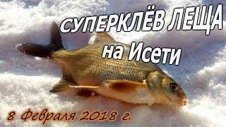 СУПЕРКЛЁВ ЛЕЩА на Исети 08/02/2018 ловля подлещика зимой на реке на мормышку