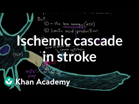 The ischemic cascade in stroke | Circulatory System and Disease | NCLEX-RN | Khan Academy