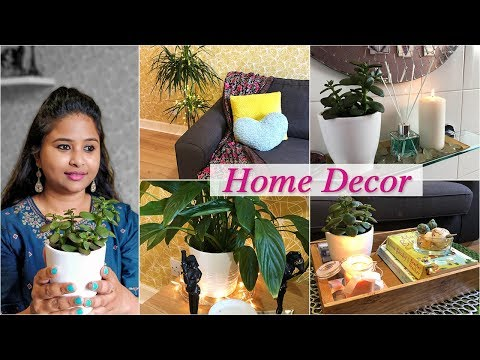 Home Decor Ideas | Decoration with Indoor Plants | Easy DIY Room Decor