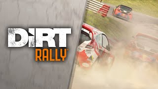 DiRT Rally PS VR [UK]