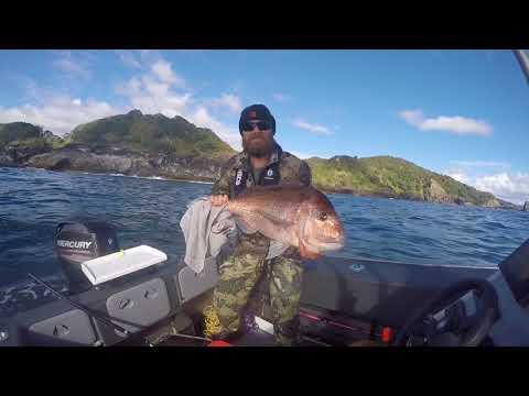 Snapper Fishing Tairua, New Zealand