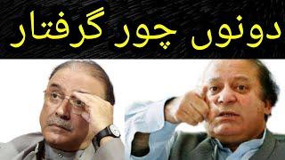 The Future Of Asif Zardari And Nawaz Sharif Will Decide By Saqib Nisar And Sc  