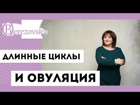 Длинные циклы и овуляция - Др.Елена Березовская
