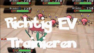 EV Training Tutorial [Pokémon ORAS/German]