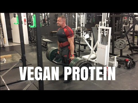 Getting Enough Protein on a Vegan Diet - Vegan Life 2