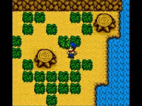 gameboy color Harvest Moon 3
