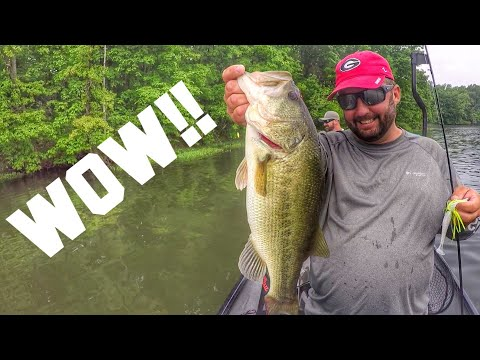 WOW! Fishing In Illinois -ft. TackleJunky81 And Phantom Fishing