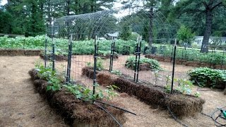 Bale Garden Cattle Panel Arched Trellis and Trellis Tunnels