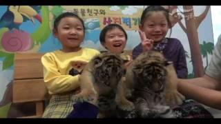 [어린이대공원] 아기호랑이와 함께하는 겨울방학 동물교실썸네일