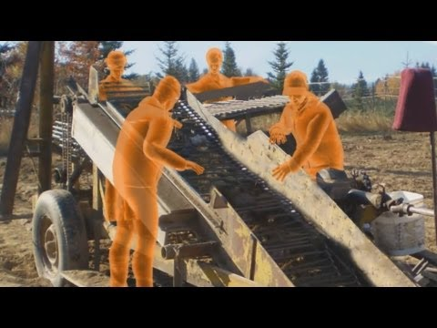 Farm Accident: Potato Harvester Amputates Worker's Forearm