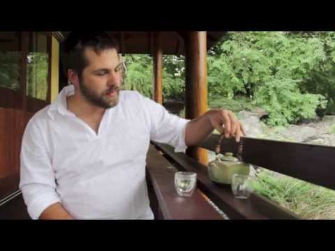 How to Brew the Perfect Green Tea - We are 'The Way of Tea'