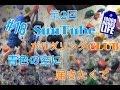 橋本楓 おまいらまとめ の動画、YouTube動画。