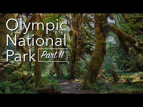 Olympic National Park - Part II - USA / Canada Road Trip