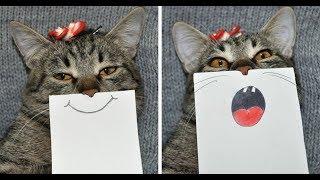 Лучшие Приколы про животных | Подборка самых смешных видео про животных #2