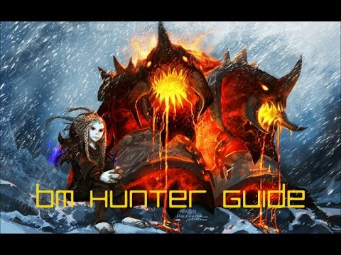 100 BM Hunter Guide - Warlords Of Draenor Hunter PvP Guide - Patch 6.0.3