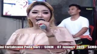 FULL ALBUM AREVA MUSIC HOREE TERBARU 2019 # KOLEKSI ARDHANI TV