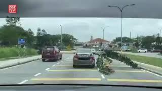 Pokok pisang punya pasal, terbongkar semua kesalahan trafik